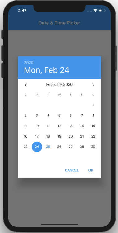 Screen-Shot-2020-02-25-at-14.47.14-10 Membuat Date Time Picker